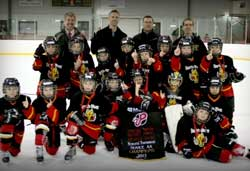 2013-14 Novice AA Flames