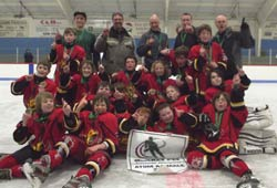 2013-14 Atom AA Bulk Carriers Flames