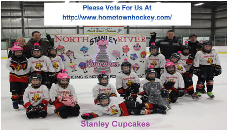 2014-15 Novice A Stanley Cupcakes